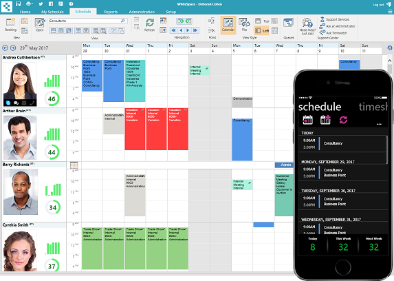 Professional resource scheduling system